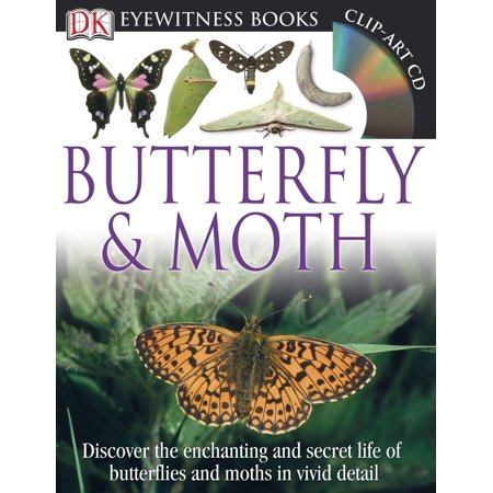 DK Eyewitness Books: Butterfly and Moth : Discover the Enchanting and Secret Life of Butterflies and Moths in Vivid Detail