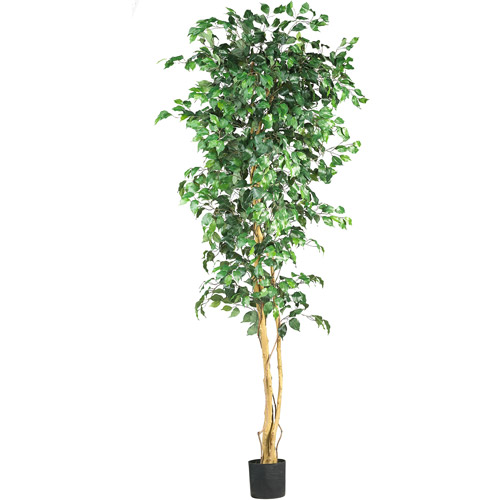 Nearly Natural Ficus Silk Tree, 7-Feet, Green