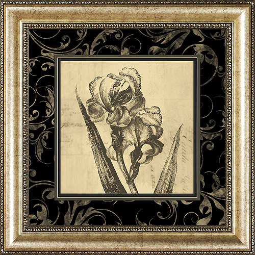 Sepia Floral II, Framed Artwork by Pro Tour Memorabilia