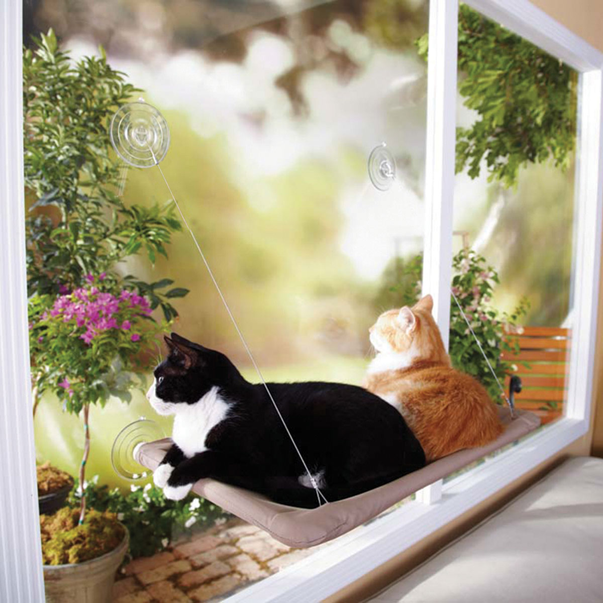 Oster Sunny Seat Cat Window Mount (DRP-SUNY-BLT6)