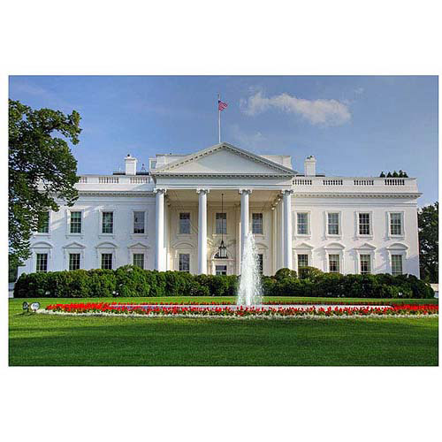 "Trademark Art ""White House"" Canvas Art by CATeyes, 22x32"