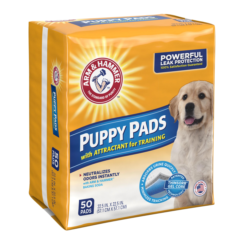 Arm & Hammer Absorbent Puppy Pads Dog , 50 Ct - Walmart.com