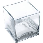 "Lerman Dcor Glass 5"" Clear Square Vase, 1 Each"