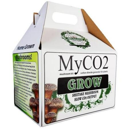 Mushroom Growing Kit (MyCO2 Mushroom Bag - Grow)