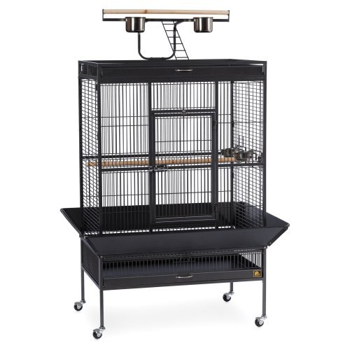 Prevue Pet Products 3154C Chalk White Hammertone Wrought Iron Select Bird Cage with Playtop, 35-3/8 Inch Length x 23-1/2 Inch Width x 67 Inch Height, Large