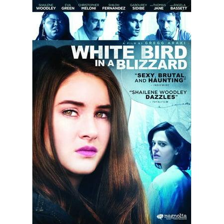 White Bird In A Blizzard  Widescreen