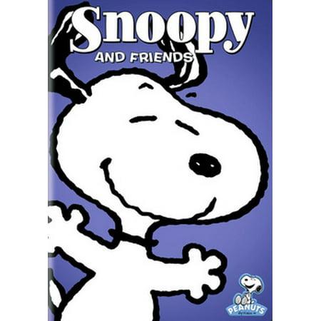 Peanuts: Snoopy & Friends (DVD)