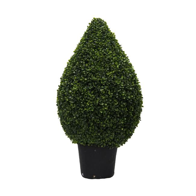 UV Boxwood Teardrop Shaped Everyday Topiary in Pot - 36 in.