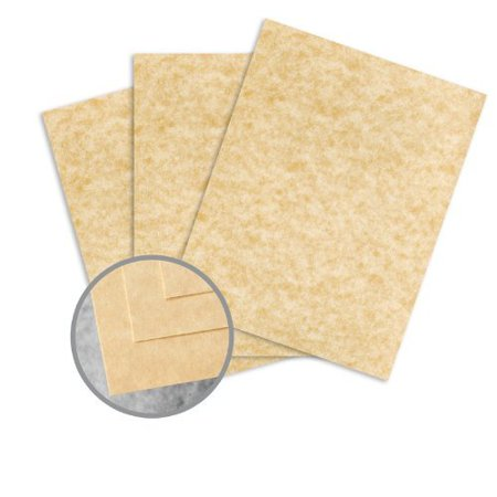 Skytone Champagne Card Stock - 8 1/2 x 11 in 65 lb Cover Vellum 30% Recycled 250 per Package ()