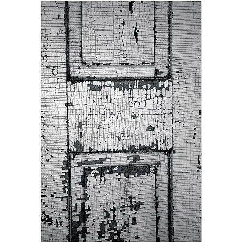 "Trademark Fine Art ""Chippy Paint"" Canvas Art by Patty Tuggle"
