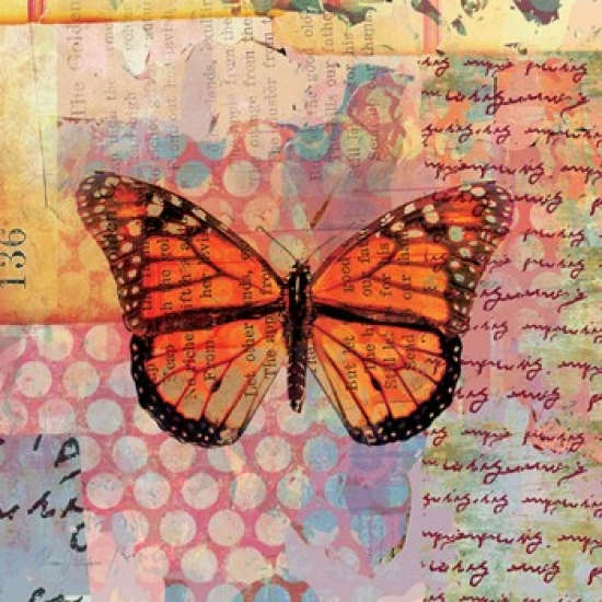 Homespun Butterfly IV Poster Print by Dominic Orologio (16 x 16)