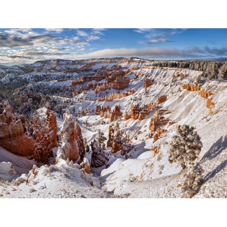 USA, Utah, Bryce Canyon National Park, Winter Morning in the Bryce Canyon Amphitheater Print Wall Art By Ann (Bryce Amphitheater)
