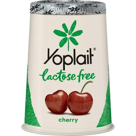 Yoplait Lactose Free Yogurt Cherry, Gluten Free, 6 oz Cup (Yogurt Gluten Free)