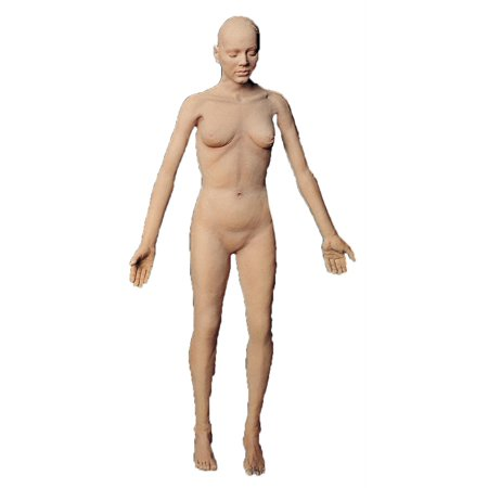 Flex Body Female - image 1 of 1