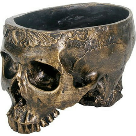 Human Skeleton Skull Planter Plant Pot Halloween Home Decoration Décor New