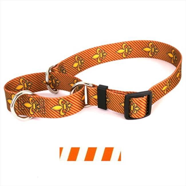 Yellow Dog Design Team Spirit Martingale Collar - Small