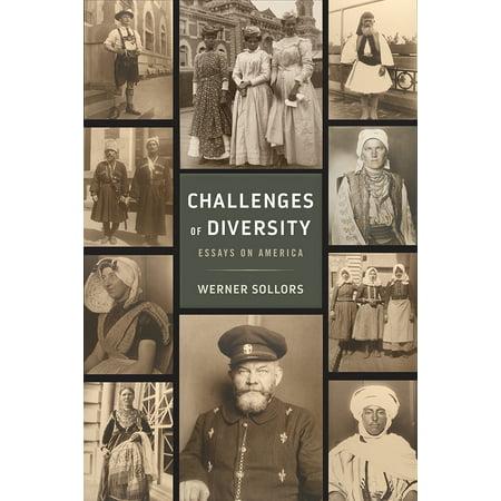 Diversity in usa essay