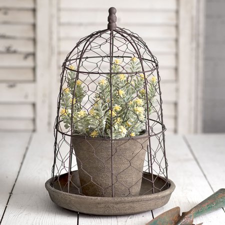 Chicken Wire Cloche with Terra Cotta Pot and Saucer ()
