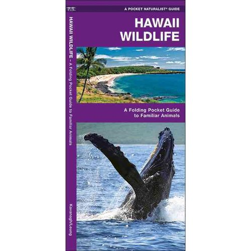 Hawaii Wildlife: A Folding Pocket Guide to Familiar Species