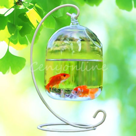 Grtsunsea Hydroponic Wall Hanging Bubble Aquarium Fish Glass Vase Tank Plant Home (Glass Wall Vase)