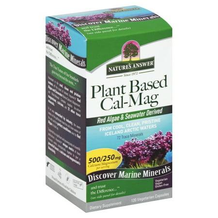 Natures Answer Plant Based Cal Mag Veg Capsules, 120 Ea Cal Mag Tablet Vitamins