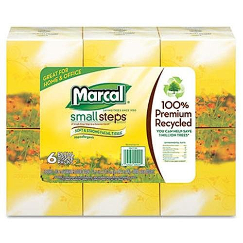 Marcal Paper Mills Recycled White Facial Tissue in Fluff-Out Boutique Box, 80/Box, 6 Boxes/Pack 4034
