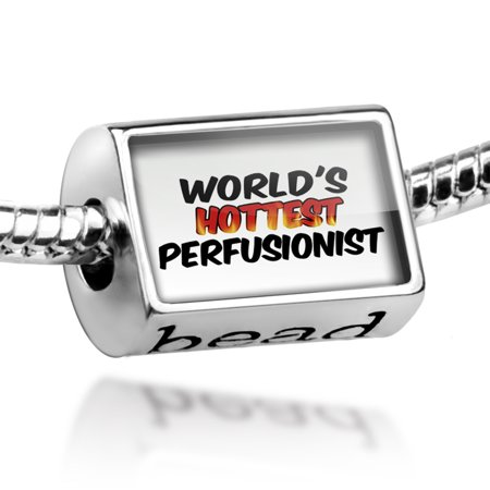 Hottest Women Of The 70s (Bead Worlds hottest Perfusionist Charm Fits All European)