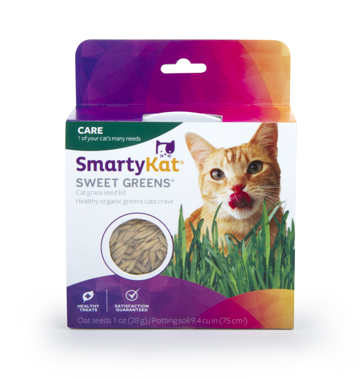 SmartyKat Sweet Greens Kit Cat Grass Grow Kit