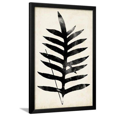 Fern Silhouette III Framed Print Wall Art By Vision Studio