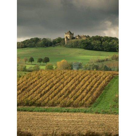 - Vineyards Near Lons Le Saunier, Jura, Rhone Alpes, France Print Wall Art By Michael Busselle