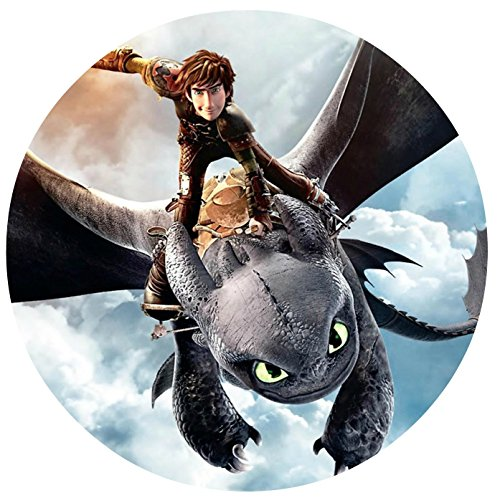 "How to Train Your Dragon Edible Image Photo 8"" Round Cake Topper Sheet Personalized Custom Customized Birthday Party"
