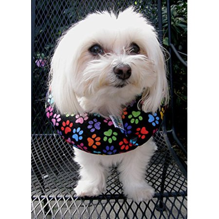 Puppy Bumper - Keep Your Dog on the Safe Side of Fence - Rainbow Paw, Up to 10