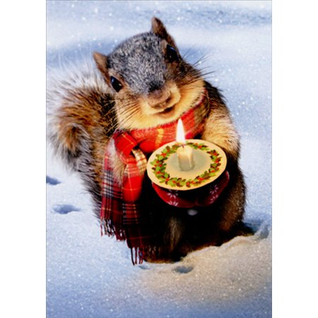 Avanti Press Snowy Squirrel Holds Candle Box of 10 Christmas Cards