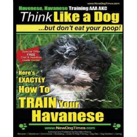 Havanese  Havanese Training Aaa Akc   Think Like A Dog  But Dont Eat Your Poop   Heres Exactly How To Train Your Havanese