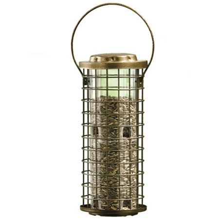 Perky-Pet 3 lb Squirrel Stumper Wild Bird Feeder