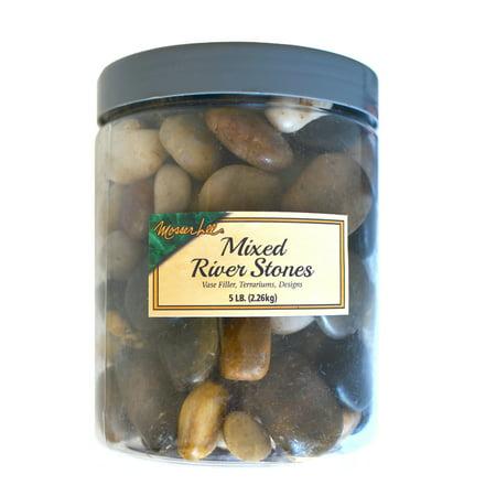 Mosser Lee ML2163 Mixed River Stones, 5 lb. 8 pack ()