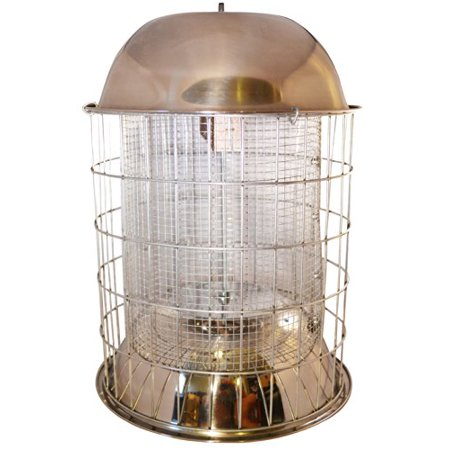 Best Squirrel Proof Bird Feeder - Heavy-Duty Repellent Cage Design By Bird (Best Squirrel Proof Bird Feeder For Cardinals)