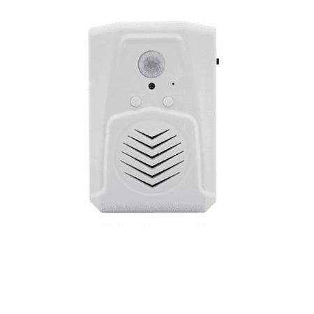 Mini PIR Motion Activated Audio Player