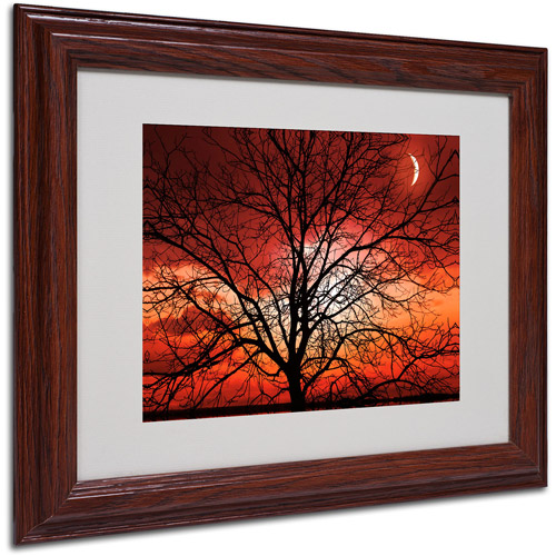 "Trademark Fine Art ""Big Bad Moon"" Canvas Art by Philippe Sainte-Laudy, Wood Frame"