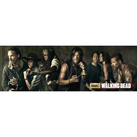 The Walking Dead   Tv Show Door Poster   Print  Character Collage   Size  62  X 21