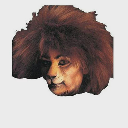 Costumes For All Occasions Fa32Sm Cat Face Woochie Small - Cute Cat Halloween Makeup And Costume
