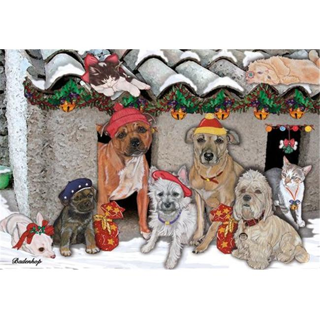 Pipsqueak Productions C522 Mix Dog With Cat Holiday Boxed Cards