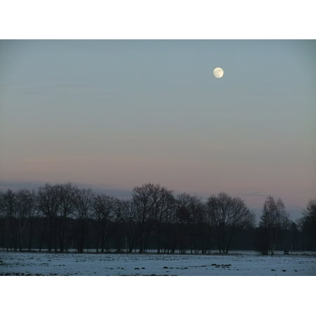 Canvas Print Views Natural Snow Woods Round The Moon Twilight Stretched Canvas 10 x 14