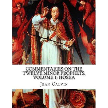 Commentaries On The Twelve Minor Prophets  Volume 1  Hosea