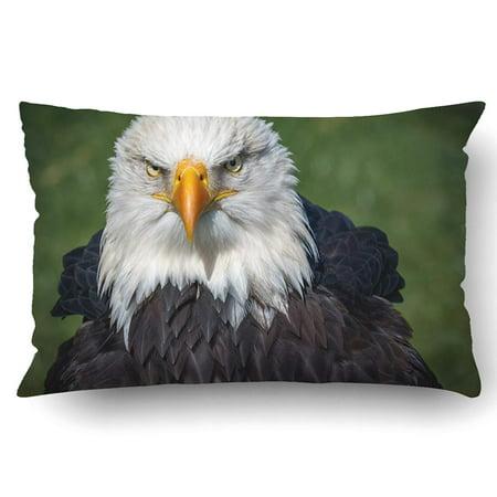 BPBOP Bald Eagle Pillowcase Pillow Cushion Cover 20x30 (Eagle Creek Pillow)