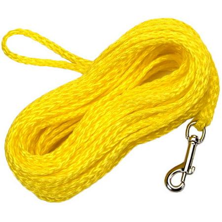 Remington Poly Check Cord Training Dog Leash, 50'](Dig Corp)