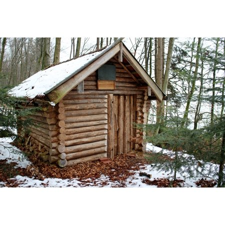 Cabin Blocks (Canvas Print Nature Home Block House Log Cabin Forest Winter Stretched Canvas 10 x)