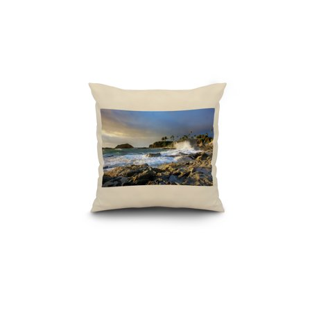 Rocky Coast Palms Lantern Press Photography 16x16 Spun Polyester Pillo