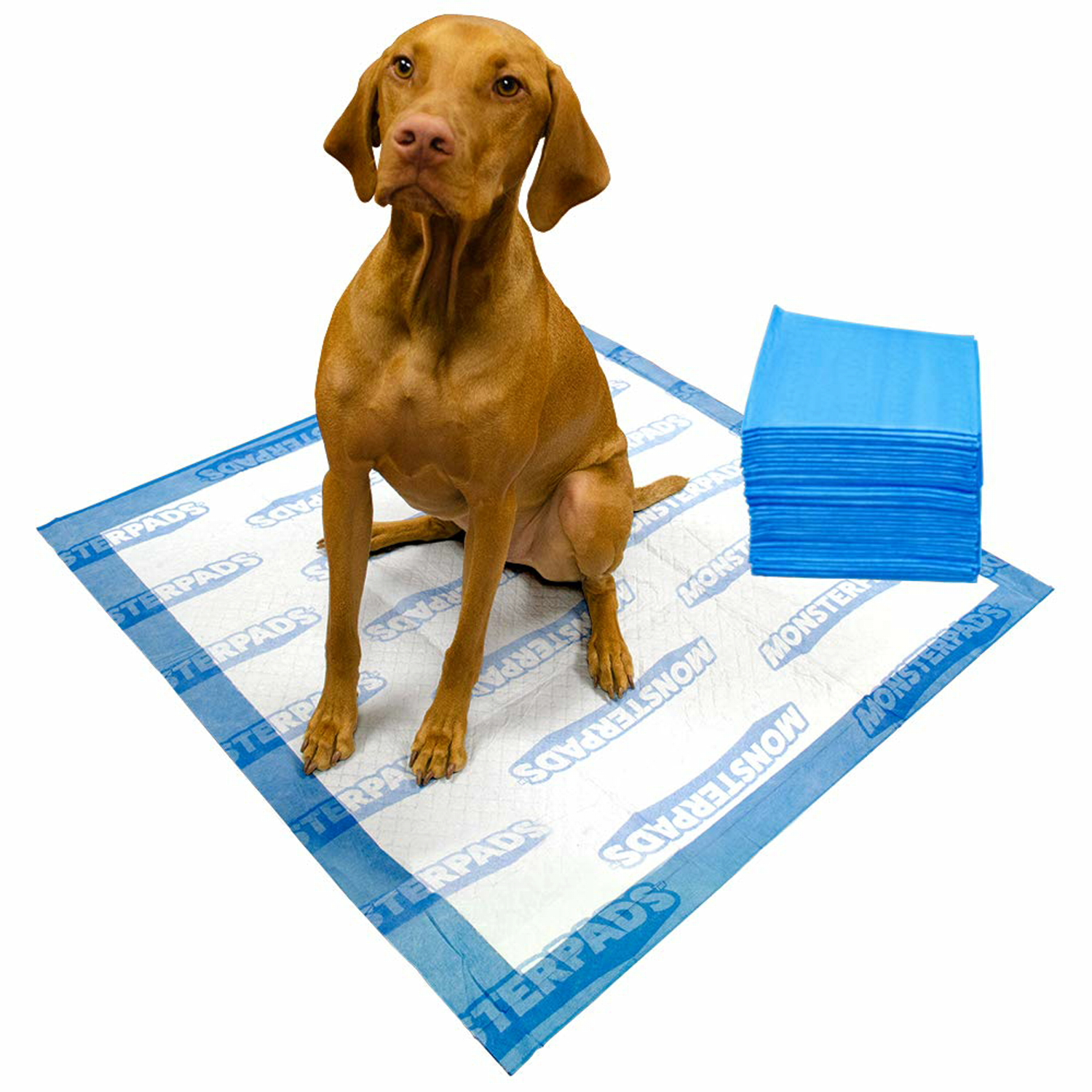 OUT! MonsterPads 7-Layer Dog Training Pads, 36x36 Inch, 40 Count