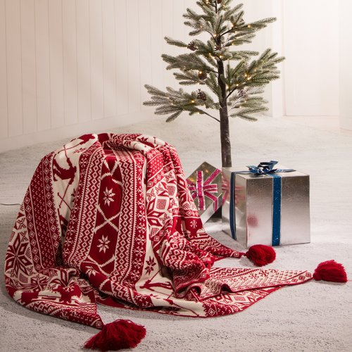 The Holiday Aisle Allred Knitted Tassel Throw
